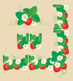 Rectangular frame ornament with Strawberries. In heart shapes with flowers and leaves isolated on gray background. Pattern endless fragments and vignette Royalty Free Stock Photography