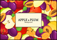 The rectangular frame on ripe apple plum fruit background. Vector card illustration. Delicious fresh and juicy apples Royalty Free Stock Photography