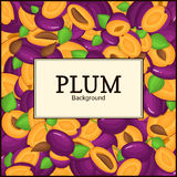 The rectangular frame on ripe plum background. Vector card illustration. Delicious fresh juicy  whole, peeled, piece of Royalty Free Stock Images