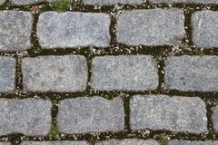 Rectangular, gray and rough-hewn paving stones Royalty Free Stock Images
