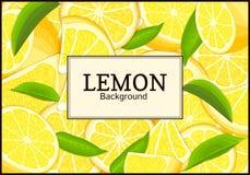 Rectangular label on citrus lemon fruits background. Vector card illustration. Stock Photo
