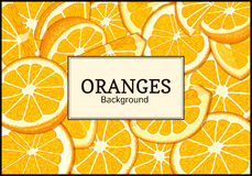 Rectangular label on citrus oranges fruits background. Vector card illustration. Royalty Free Stock Photos