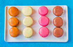 Rectangular Plate of Colorful Macarons Royalty Free Stock Images