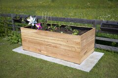 Free Rectangular Raised Bed Made Of Wood On Granite Stones With Small Plants Royalty Free Stock Images - 184039549