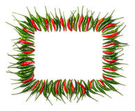 Rectangular red and green bird chili frame Stock Image