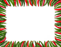 Rectangular red and green bird chili frame Stock Images