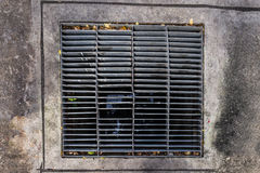 Rectangular sewer with a rust and holes. In the cement ground Stock Images