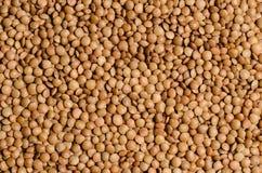 Free Rectangular Texture Of Beans Lentils Stock Image - 66465331