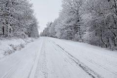 Rectifié par l'hiver Photo stock