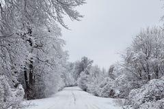 Rectifié par l'hiver 2 Photographie stock libre de droits