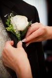 Rectifier le marié Images libres de droits