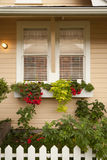 Rectángulos del plantador con las flores bajo ventana Imagen de archivo libre de regalías
