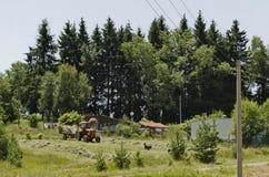 Recueillez le foin du beaux gisement de fleurs et chargement au-dessus du tracteur Photographie stock libre de droits
