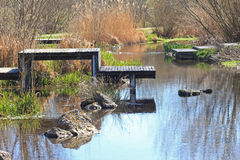 Recultivated creek with boardwalks Stock Images