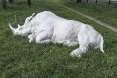 Recumbent rhino stock photos