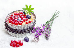 Recurrant tart still life Royalty Free Stock Image