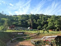 Recurso de acampamento do songmueng da paisagem do Mountain View em nan Tailândia Imagem de Stock