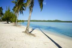 Recurso de console tropical foto de stock royalty free