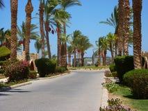 Recurso de Egito Hurghada Imagem de Stock