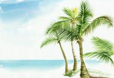 Recurso de Palm Beach ilustração royalty free