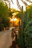 Recurso do Arizona com por do sol fotos de stock royalty free