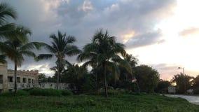 Recurso na República Dominicana video estoque
