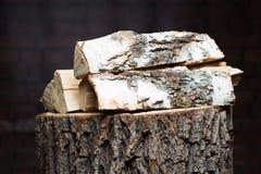 Recurso renovable de madera del fuego de una energía Foto de archivo