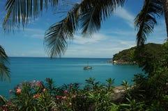Recurso tropical Imagem de Stock