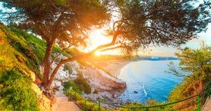 Recurso tropical do verão fotografia de stock