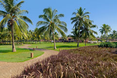 Recurso tropical luxuoso imagens de stock royalty free