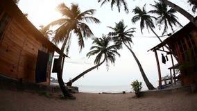 Recurso tropical na praia vídeos de arquivo