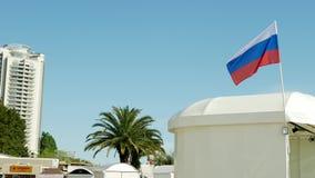 Recursos da regi?o de Krasnodar, a terraplenagem central de Sochi 12 de maio de 2019 editorial vídeos de arquivo