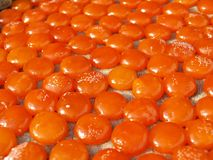 Recursos do fundo: Yolk de ovo chinês de secagem do pato fotografia de stock