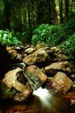 Recursos naturais 05 Fotografia de Stock