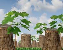Recursos renovables Fotografía de archivo