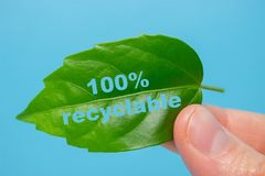 100% Recycable概念 免版税图库摄影