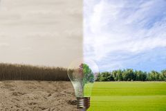 Recyclable environment human hands holding big plant tree in light. Bulb with Royalty Free Stock Images