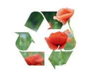 Recyclage de logo d'un pavot Photographie stock