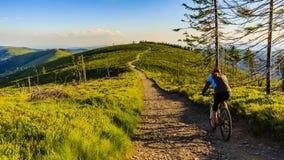 Recyclage faisant du vélo de montagne au coucher du soleil dans le LAN de forêt de montagnes d'été Photographie stock libre de droits