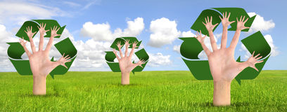 Recycle. Tree made of hands and recycle symbol over a green field Stock Photo