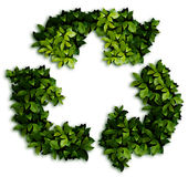 Recycle. The recycle. Green laurel Leaves background Stock Image