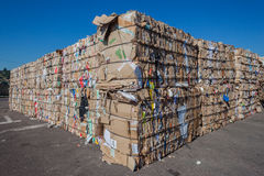 Recycle Cardboard Waste Stacks Royalty Free Stock Image