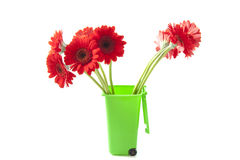 Recycle the flowers Royalty Free Stock Photography