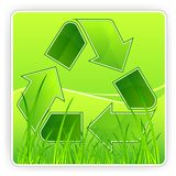 Recycle & grass Stock Photography
