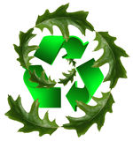 Recycle icon and leaves Royalty Free Stock Images