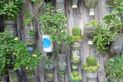 Recycle Jardiniere. Green nature background Stock Photo