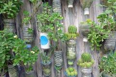 Recycle Jardiniere Stock Photo