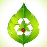 Recycle on Leaf Stock Images