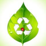Recycle on Leaf. Illustration of bug biting leaf forming recycle symbol stock illustration
