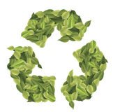 Recycle. Leaves background  background summer nature Royalty Free Stock Images